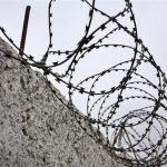 Трейдер из Сарова получил 7 лет колонии за мошенничество на форекс
