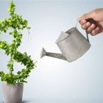 Как определить прибыльность по типу торговой системы